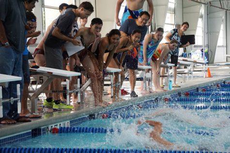 Black Prevails in Annual Orange vs. Black Swim Meet