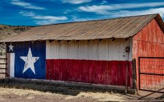 Are You as Texan as You Think?