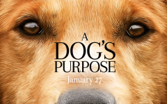 'A Dog's Purpose' Movie Falls Short in Telling a Heartfelt Story
