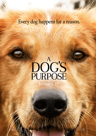 'A Dog's Purpose' Movie Fails to Tell Heartfelt Story