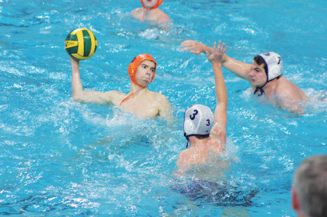 Boys' Water Polo Experiences Some Success at Regionals