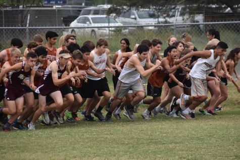 Cross Country Qualifies for District Meet