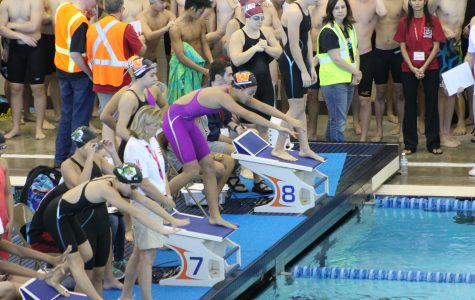 Angela Wang '17 prepares for a relay exchange during the girls' 200-yard medley relay.