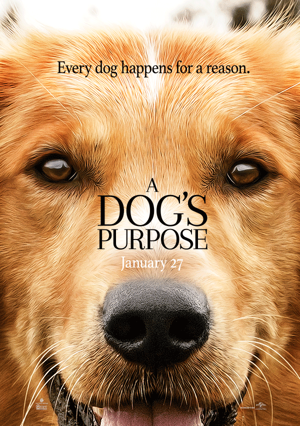 A Dog S Purpose Full Movie Movies