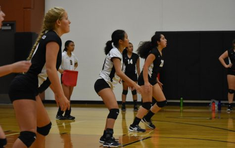 Freshman Volleyball Falls to Westlake