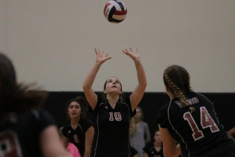 JV White Volleyball Conquers the Hawks in Two Sets