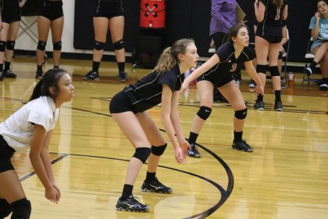 GALLERY: JV White Volleyball Faces McNeil