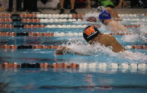 Swim Team Places Third in AISD Invitational Meet