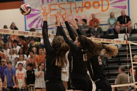 Varsity Volleyball Takes Trojans 3-0 in First Playoff Game