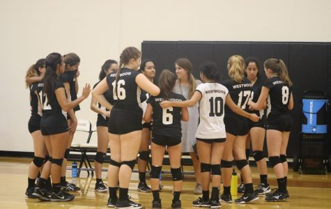 The whole team talks with their coach before securing their win against the lady panthers.