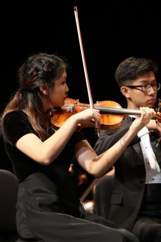 Orchestra Presents the 'Music of Beethoven' for Fall Concert