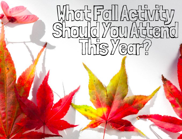 What Fall Activity Should You Do This Year?