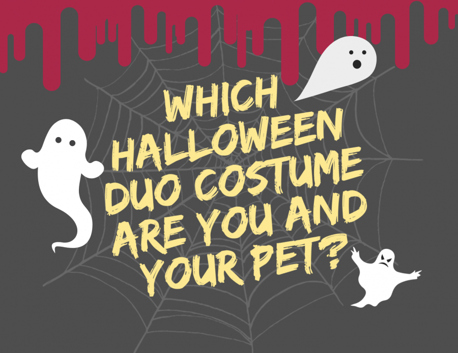 Which Halloween Duo Costume Are You and Your Pet?