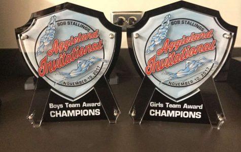 Swim and Dive Sweeps Aggieland Invitational Meet