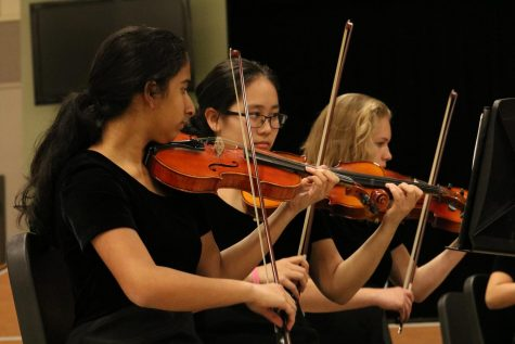 Orchestra Performs in Winter Concert