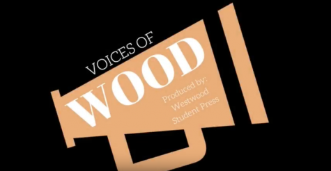 [VOICES OF WOOD] Interview with Principal Mario Acosta