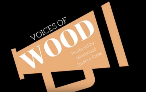 [VOICES OF WOOD] Sejal Jain '20 Discusses Songwriting Process