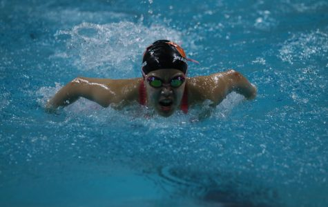 Swim and Dive Participates at State Meet