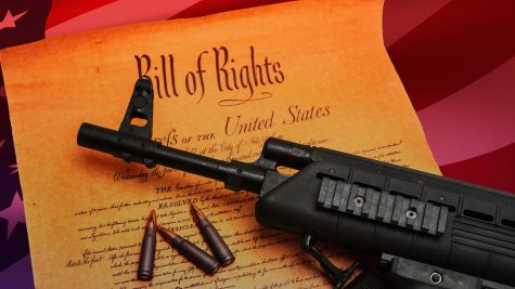 OPINION: An Open Letter to Anti-Gun Control