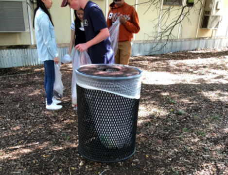 Volunteers pick up trash. Photo courtesy of Muhozi Nintunze '19
