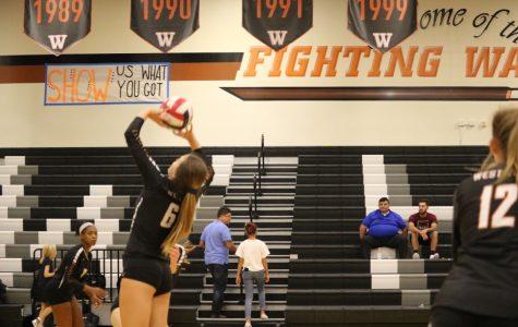 Sophia Parent '22 setting the ball.