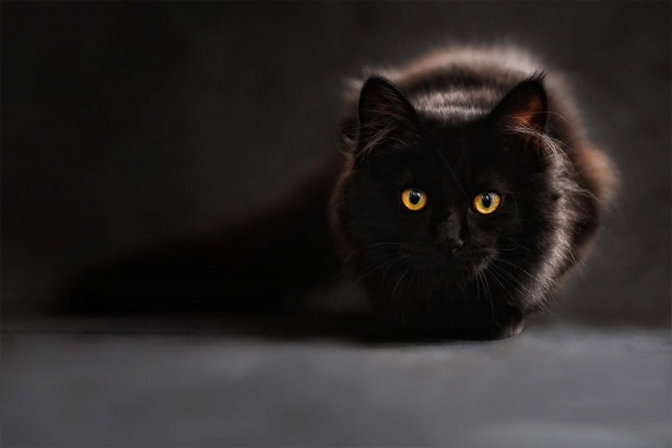 How Superstitious Are You?