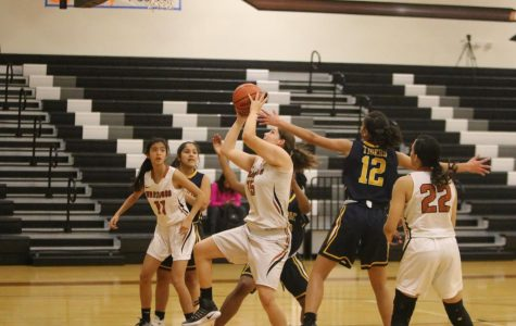 JV Girls' Basketball Takes Down Stony Point 49-32