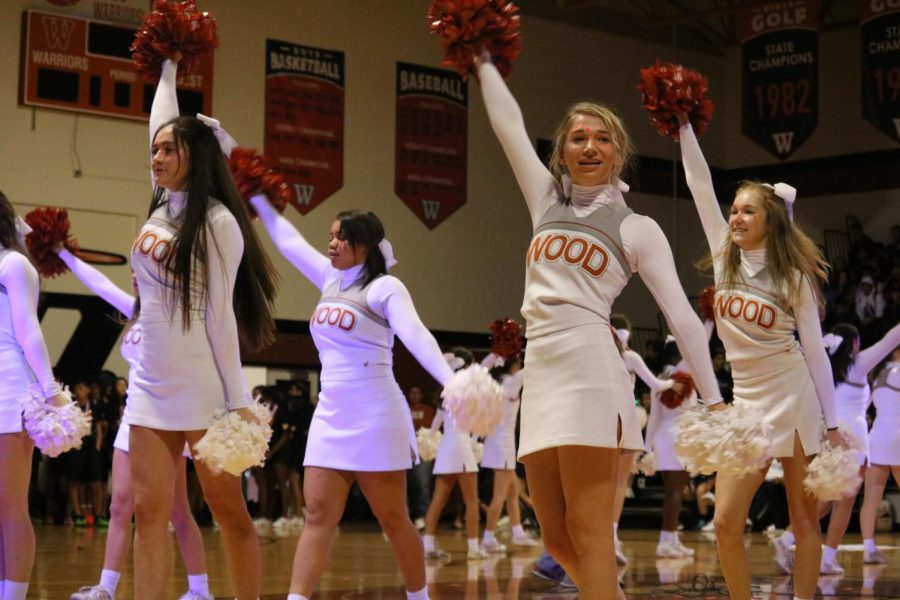 The cheerleaders perform a move from their routine.