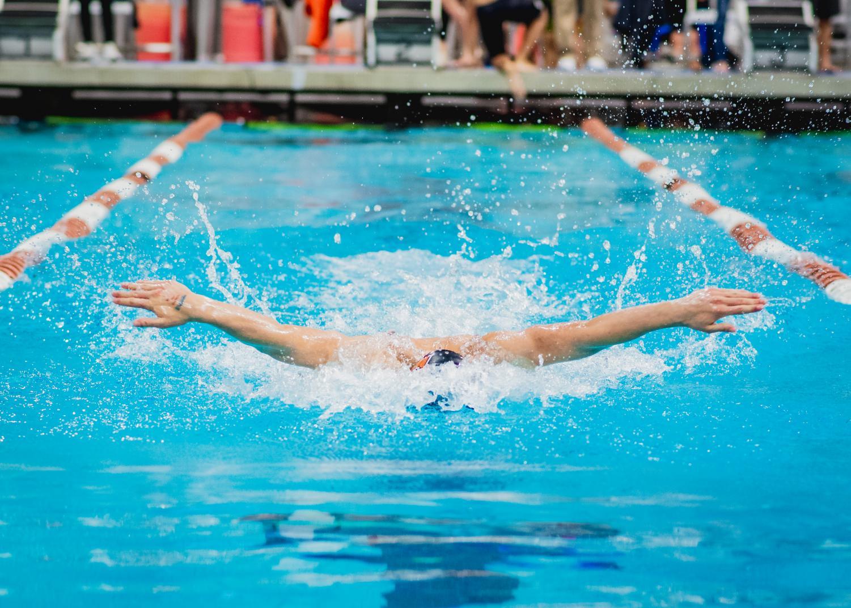 Eli+Blinchevsky+%2719+swims+butterfly.