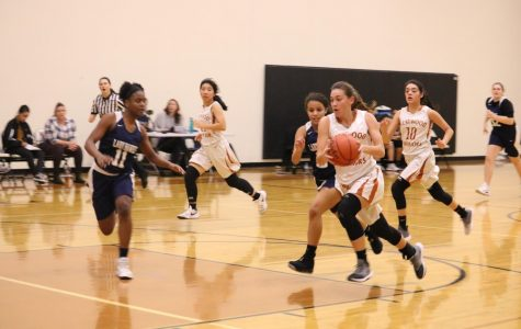 Freshman Girls' Basketball Conquered by Hendrickson 58-41