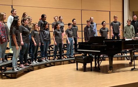 Chamber Choir Competes in Madrigal Festival