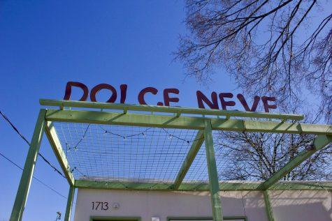 Dolce Neve Brings Italian Gelato to Austin