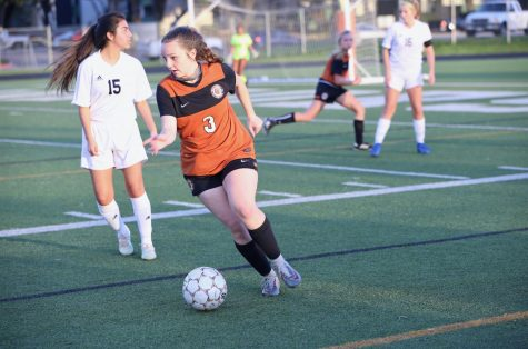 JV Girls' Soccer Clipped By Hawks' Wings 2-0