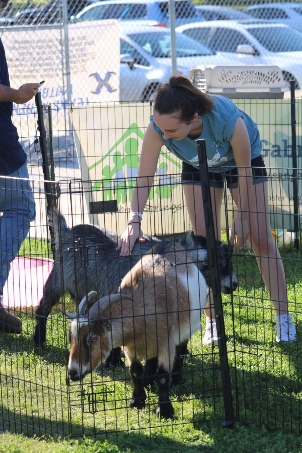 Florie+Sambuis+%2720+gently+pets+a+goat+in+the+petting+zoo.+