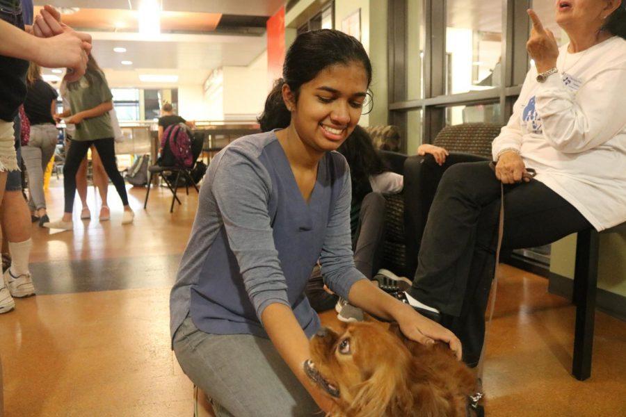 Sudiksha Pradhan '21 pets a therapy dog.