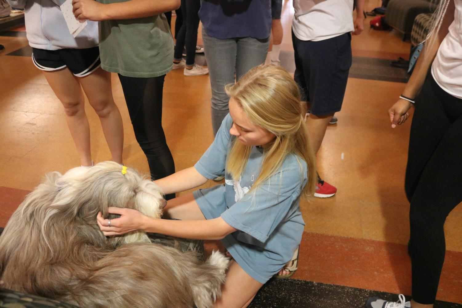 Therapy+Pet+Pals+Visit+Student+Body