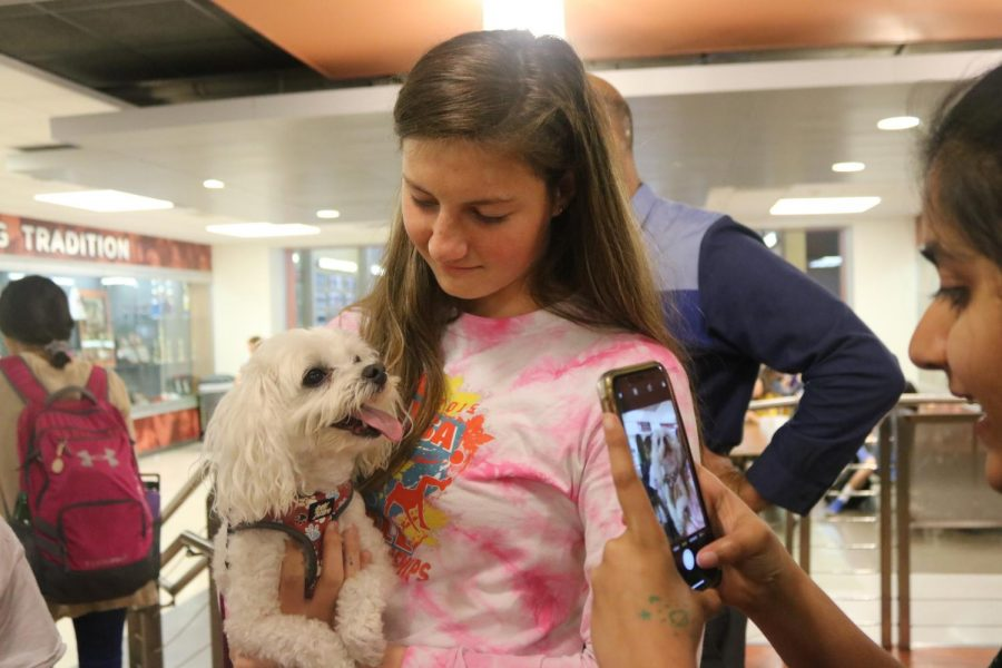 A student poses with a dog as her friend takes a photo.