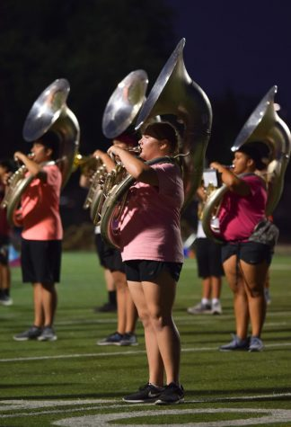 GALLERY: Band Introduces Theme in Exhibition