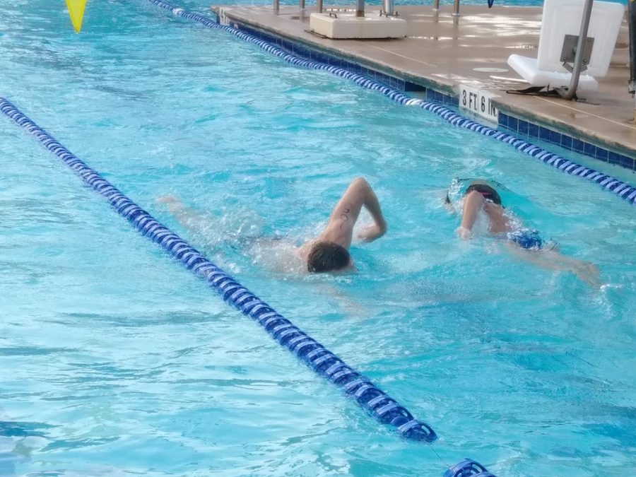 Two swimmers race during the swimming portion of the competition. The swim was 300 yards long.