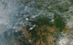 Amazon Rainforest Fires Severely Escalate Climate Change