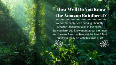 How well do you know the Amazon Rainforest?