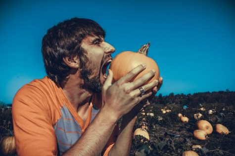 How well do you know weird foods?