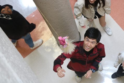 Statistics Students Collaborate in Barbie Bungee Lab