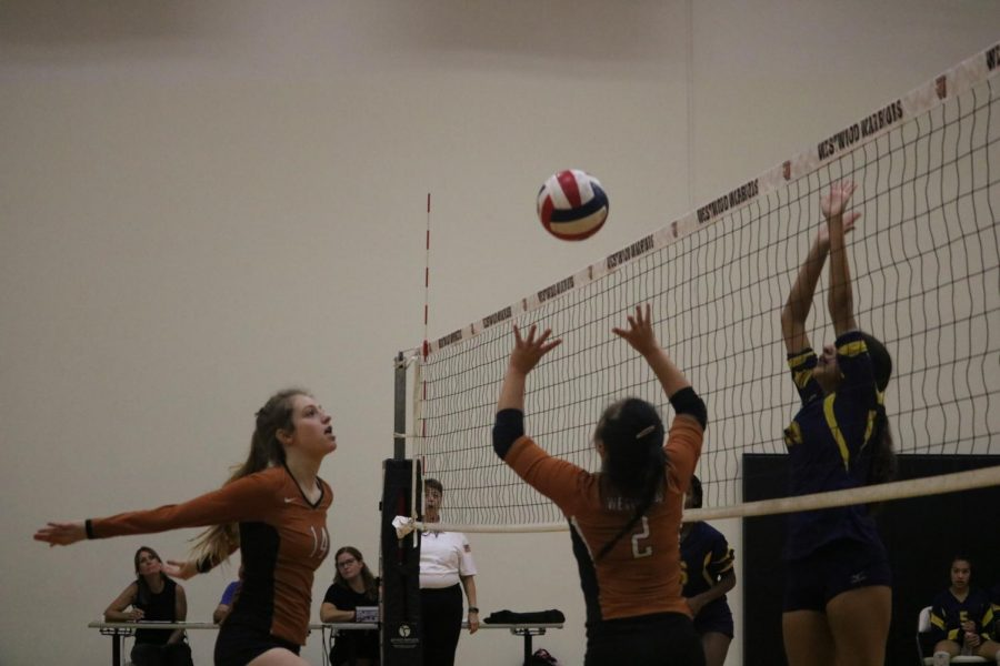 Katie Liu 23 sets the ball in order to send it over the net. After this, the Freshman team, won a point.