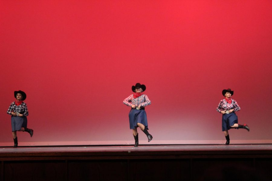 The Guzman Baile Folklórico dancing dressed as cowboys. They only danced once.