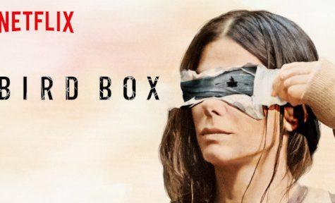 Halloween Horror Month: 'Bird Box'