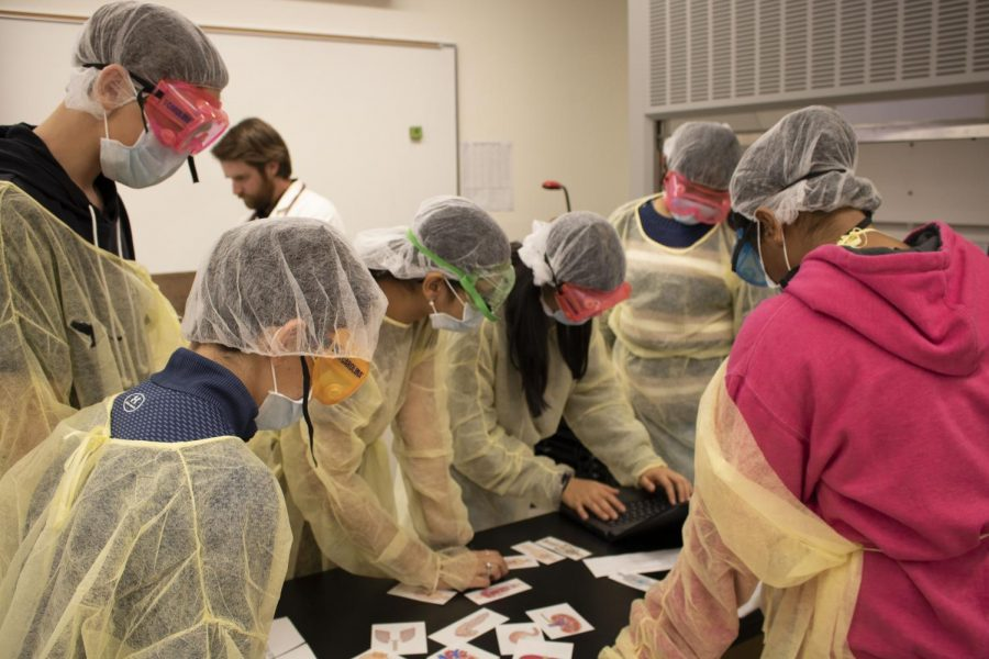 Students from the biology class perform a fake surgery.