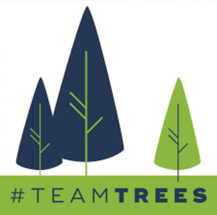 #Team Trees Creates An Online Movement