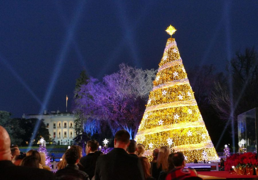 Do you know your Christmas tree facts?