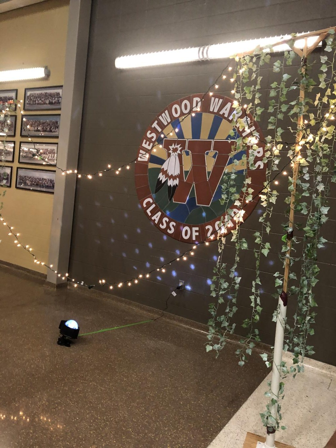 Students+set+up+lights+and+decorations+in+the+hallways+before+the+ball+begins.+%0APhoto+courtesy+of+Anaita+Merchant